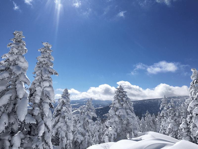 座 スキー 万 場 温泉