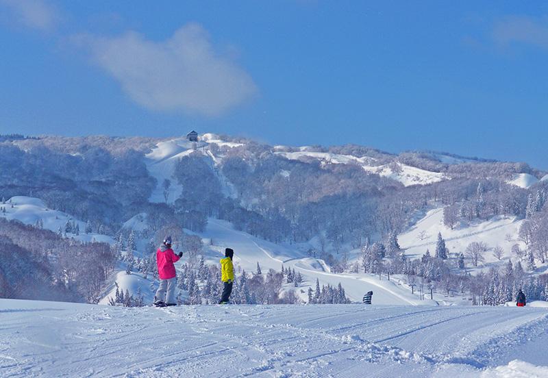 上越国際スキー場のゲレンデ風景